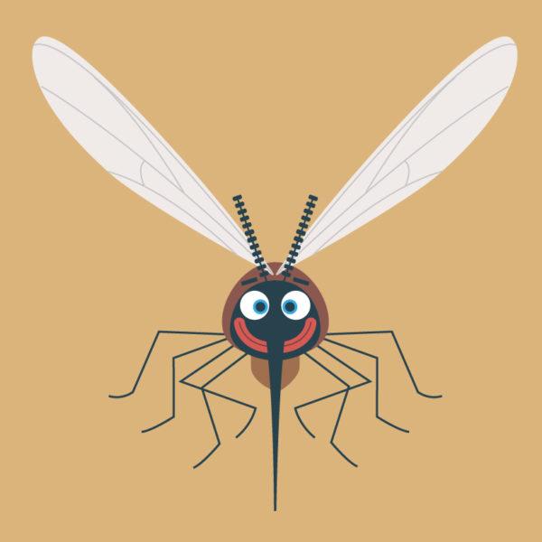 ParaKito-moustique